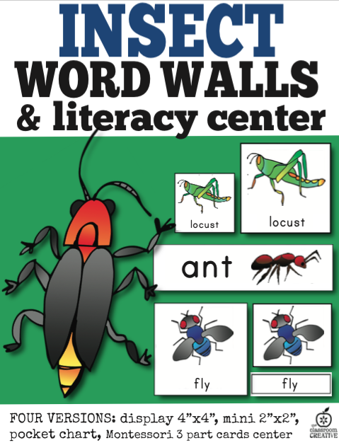 Insect Word Wall