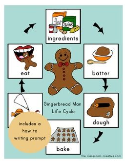 gingerbread life cycle activity