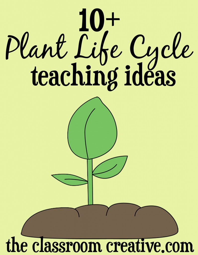 plant life cycle unit ideas, plant crafts and activities, plant unit resources