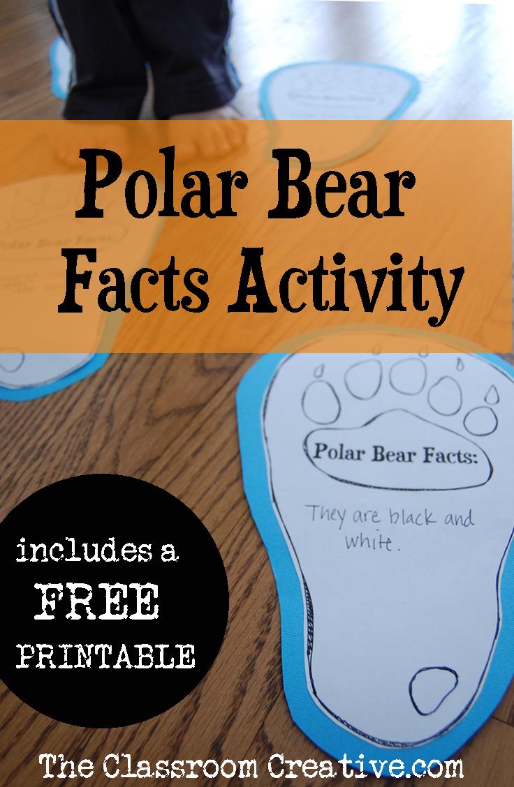 polar bear unit idea