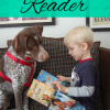 Build Confidence in a Struggling Reader by Reading to a Pet