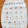 Insect Unit Idea: Interactive Insect Vocabulary Anchor Chart