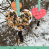 Heart Shaped Bird Feeders for Valentine's Day