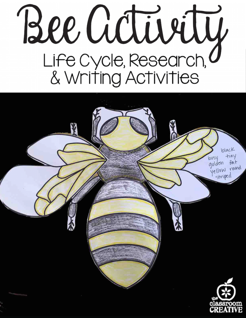 bee activity, science, language arts, drawing