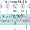 Free Printable Summer Schedule for Kids