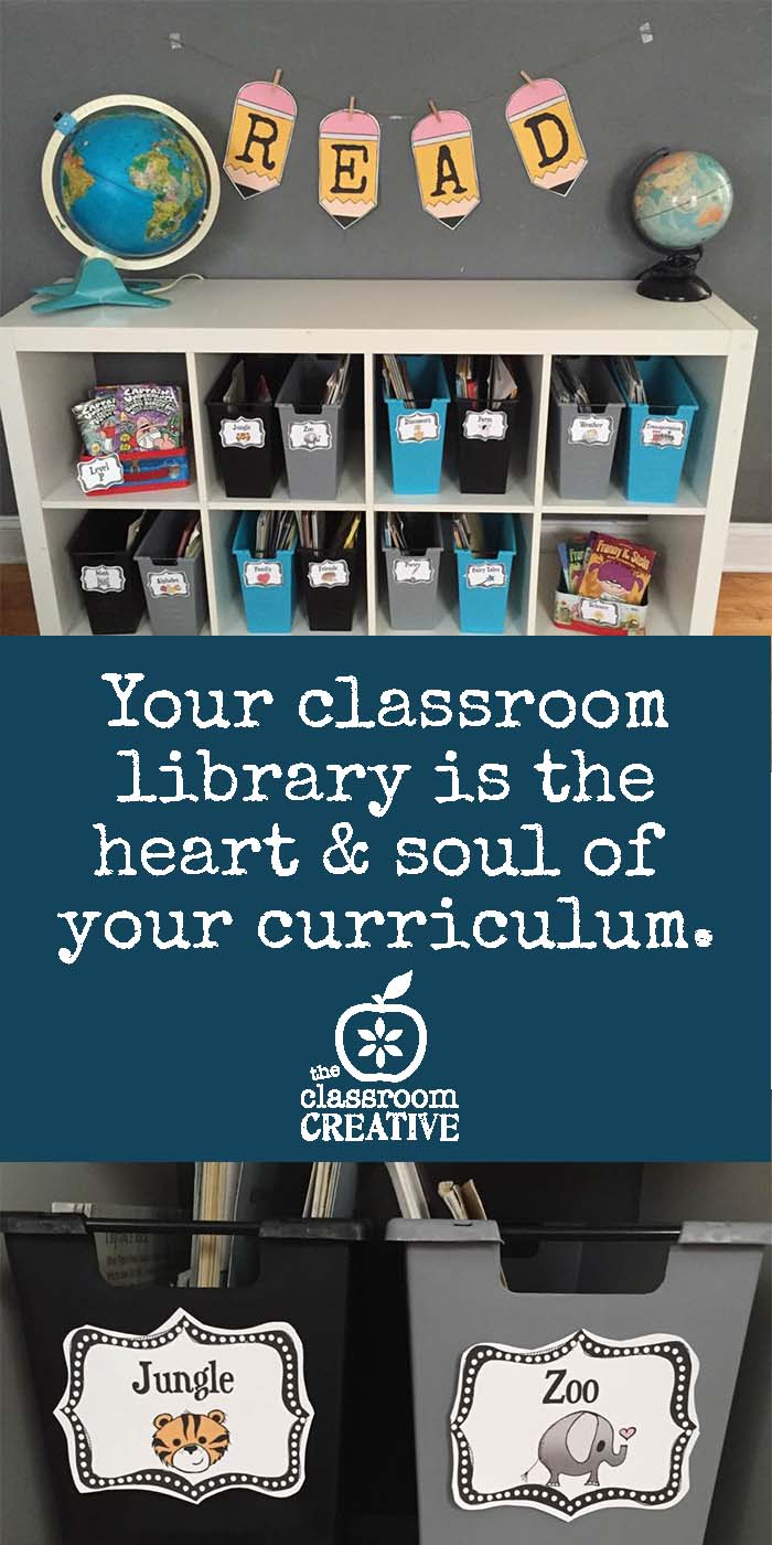 Classroom Library Ideas: Organization and Fun Storage