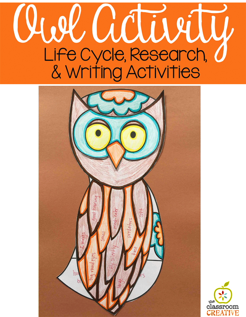 owl craft activity