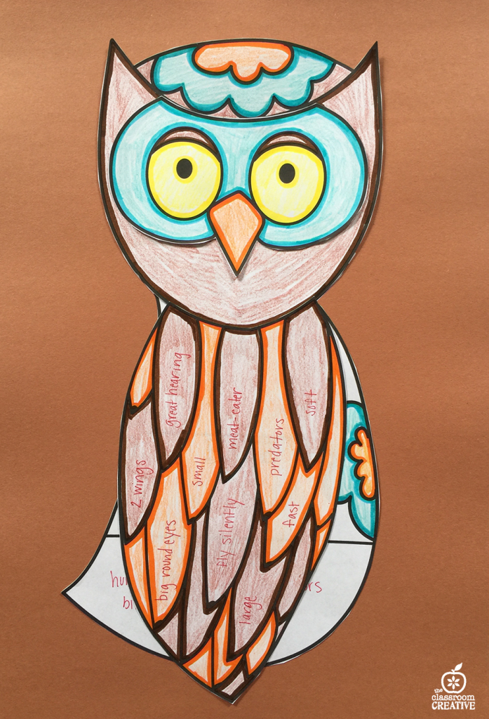 Owl ELA Science activity