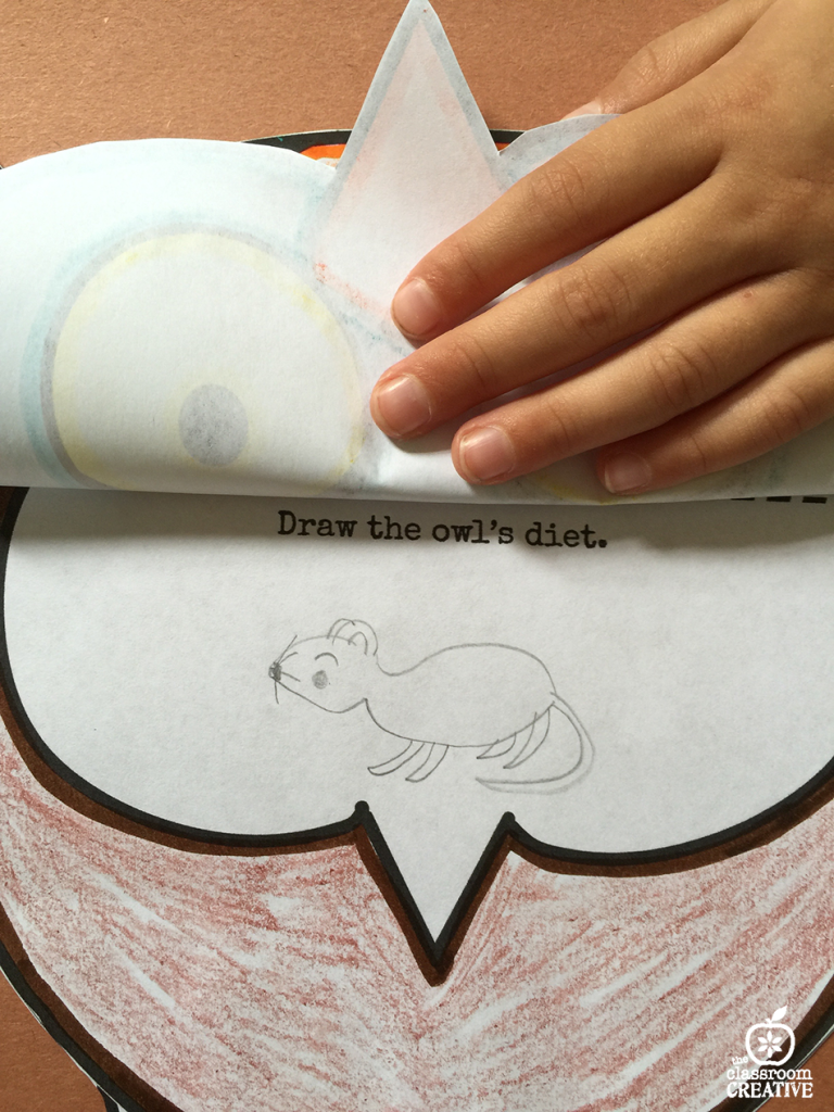 owl craft and drawing activities